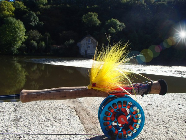 streamer mayenne